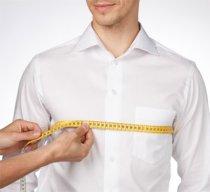 Body sizes